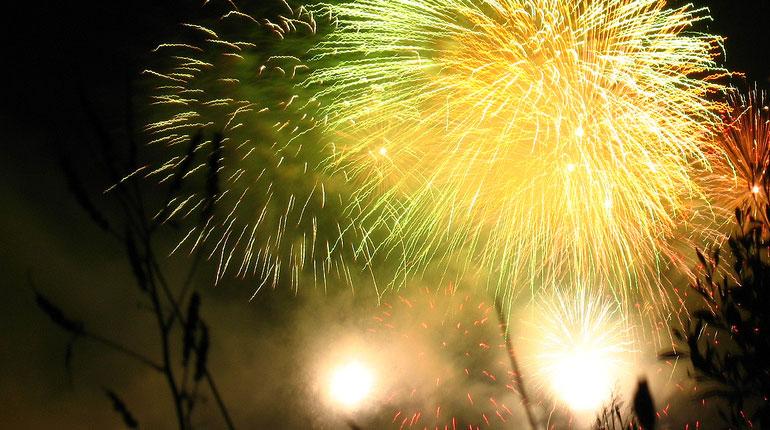 Cómo recibir el año nuevo (2010)