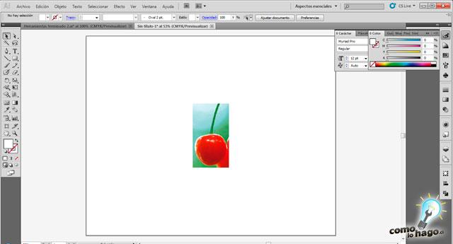 Cómo convertir una foto en una imagen trazada utilizando Illustrator